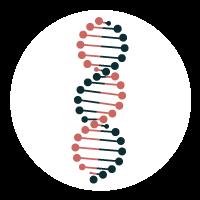icone ADN la fée bleue